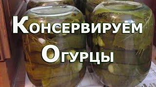 #консервация #огурцыназиму #рецептогурцов #Консервированные огурцы Вкусные и хрустящие огурцы Рецепт
