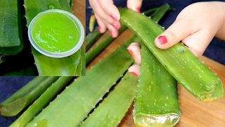 How To Make Aloe Vera Gel At Home By Simple Beauty Secretsपतंजलि एलोवेरा जेल बनाने की विधि