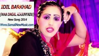 IDIL BARKHAD (WAA DAGAL ADUUNYADU) New Song 2014