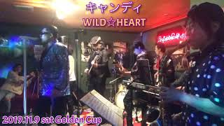 2019.11.9 sat Golden Cup WILD☆HEART4周年記念ライブ.