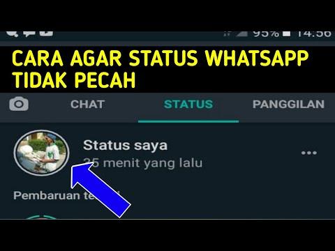 cara-upload-foto-di-status-whatsapp-agar-tidak-pecah-,-bikin-jernih