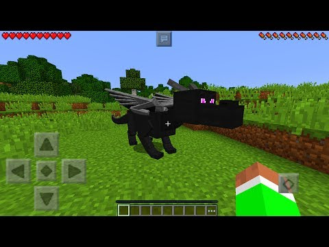 HOW TO SPAWN A BABY ENDER DRAGON in Minecraft Pocket Edition