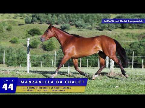 LOTE 44 - Manzanilla da Chalet