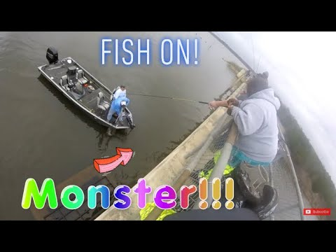 That Monster was so big he couldn't reel it in! Had to ask a boater for help! Crappie Fishing!
