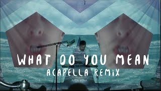 Justin Bieber - What Do You Mean? - Dillon Francis - Acapella Remix
