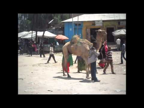 Trip To Northern Somalia
