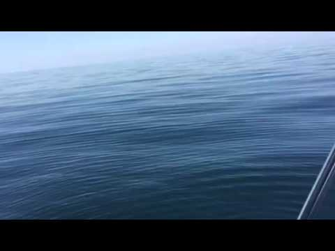 Nice and calm in the middle of the ocean