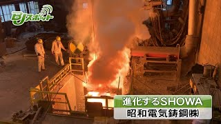 昭和電気鋳鋼株式会社