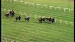 John Henry winning 1981 Arlington Million