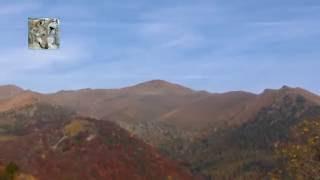 In Memory of Autumn - In Memoria dell'Autunno