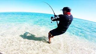 My Top 5 Most Memorable Fish Captures!!! l Super Rare Fish l Ocean to Creek l Cliff Fishing