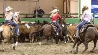 2016 Cow Country Classic Team Penning and Ranch Sorting