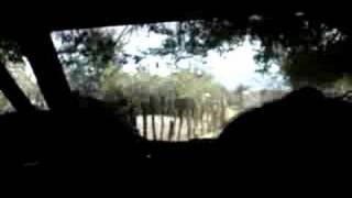Rumbo al Rancho La Laguna Seca Sinaloa Mexico