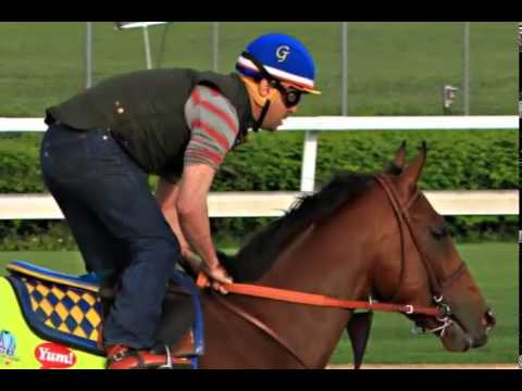 Kentucky Derby Odds: American Pharoah The Betting Favorite