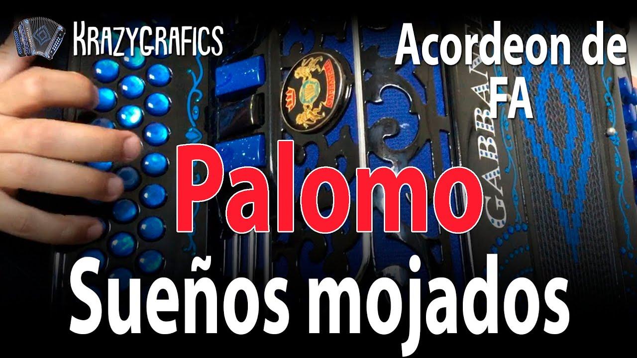 Sueños mojados INTRO | Palomo | En acordeón de FA