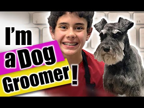 Dog Groomer Gives TIPS To HELP You GROOM Your DOG At HOME