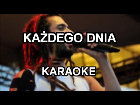 Mesajah - Każdego dnia [karaoke/instrumental] - Polinstrumentalista