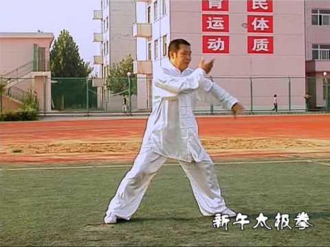 中华武术高手 新午太极传人 TAIJI 杜志高 Xinwu Taiji Chuanren Duzhigao