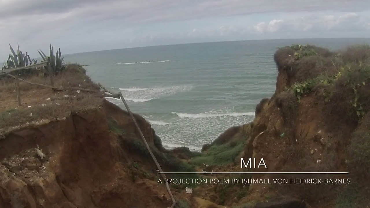 M.I.A.  A Projection Poem by Ishmael von Heidrick-Barnes