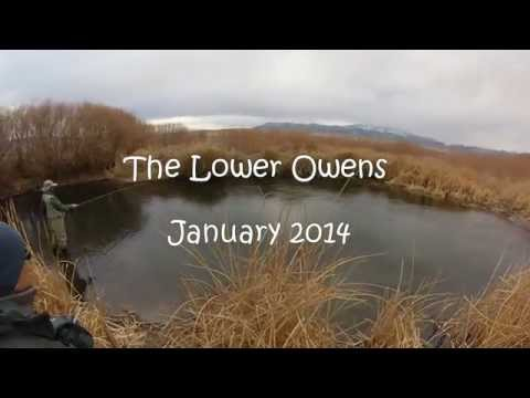 Lower Owens River Fly Fishing 1 25 14