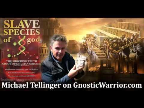 Annunaki, Hybrid Humans & Hidden History w- Michael Tellinger - Gnostic Warrior #6