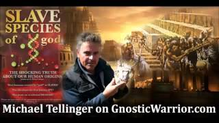 Annunaki, Hybrid Humans & Hidden History w- Michael Tellinger - Gnostic Warrior #6