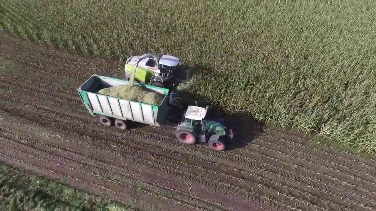 Landwirtschaft im Sönke Nissen Koog - YouTube