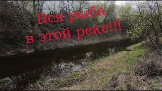 Вся рыба в этой реке и Крупняк тоже Ловля щуки после НЕРЕСТА Спиннинг 2020 Рыбалка на щуку