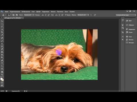 Как загрузить фотографию на Фотосток