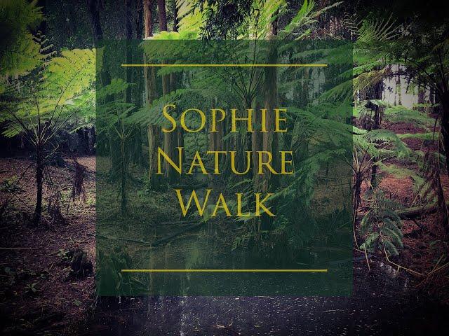 Sophie Nature Walk, qu'est-ce qu'une plante endémique ?