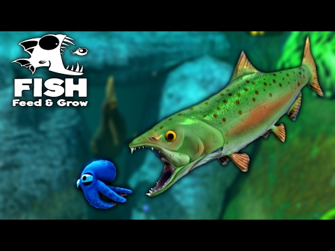 Feed and Grow Fish - NEW GIANT SALMON DRAGS BIGGEST FISH TO IT'S DEN AS FOOD ( Update Gameplay )