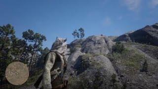 Red Dead Redemption 2 #114 - Zwiedzanie, tajemniczy dom na wzgórzu