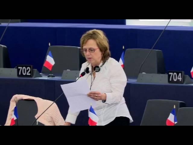 Dominique Bilde sur la mobilité des jeunes