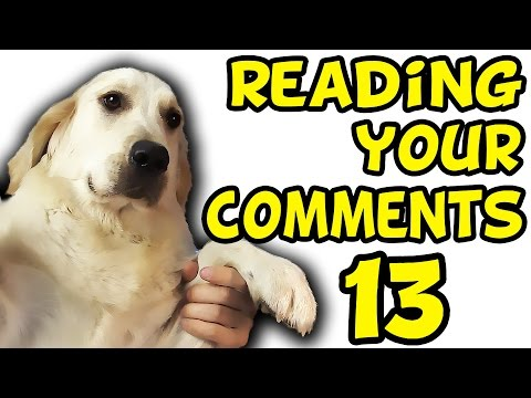 Thumbnail: DILDO BUYING HABITS | Reading Your Comments #13
