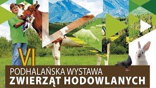 VI Podhalańska Wystawa Zwierząt Hodowlanych Ludźmierz 8 - 9 lipca 2017r.