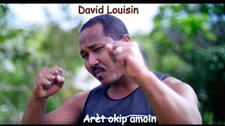 DAVID LOUISIN   Are?t okip amoin (clip Officiel)
