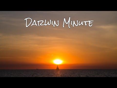 Darwin in a Minute