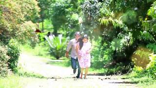 shyam ammu wedding highlights palakkad version