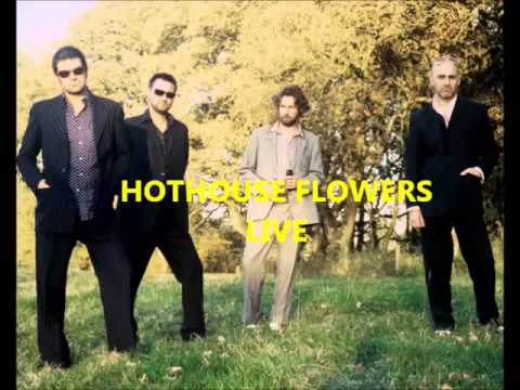 Hothouse flowers   (this is it - live)