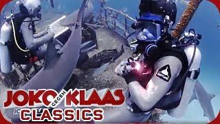 Bahamas: PANIK! Klaas wird vom Hai gebissen! | Duell um die Welt Classics | ProSieben