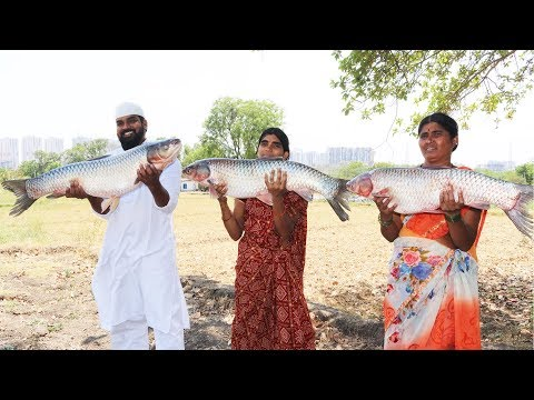 Giant 30 Kg Fish Recipe || Big Fish Curry For Kids || Nawabs Kitchen
