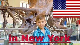 куда сходить в Нью йорке с детьми.Достопримечательности для детей Музей Естественной Истории(Куда сходить в Нью Йорке на отдыхе с детьми. Музей Естественной истории. Факты про динозавров для детей..., 2016-06-12T16:16:58.000Z)