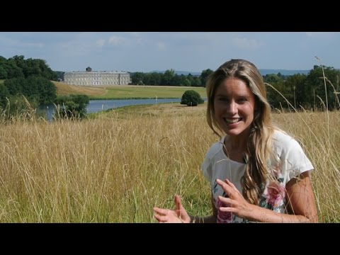 A Great British Walk in Petworth Park