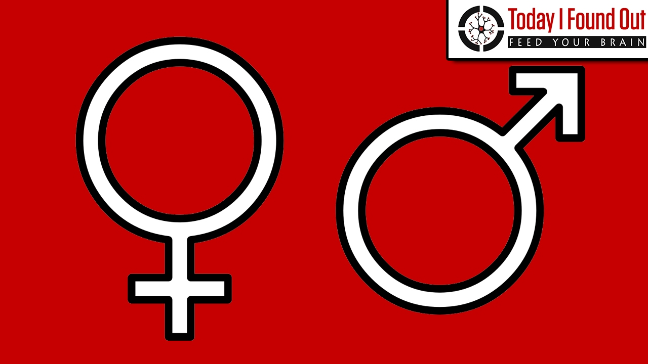 The Origin Of The Male And Female Symbols Youtube