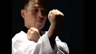 Basic Motions - JIREUGI - Taekwondo Technics in English [HD]