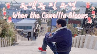 [Korea Travel] When the Camellia Blooms [kdrama]  동백꽃 필 무렵 촬…