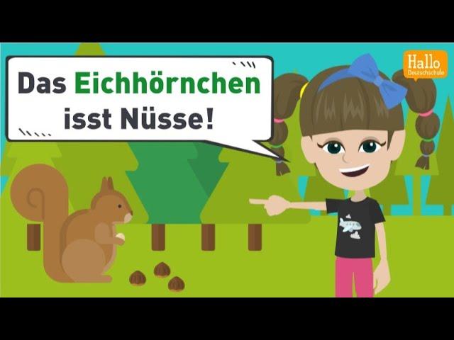 Deutsch lernen A1 und A2   Wörter mit den Umlauten ä, ö und ü   Wortschatz und Grammatik üben!