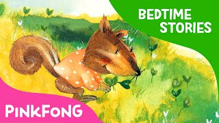 Four Seasons of the Forest | Bedtime Stories | PINKFONG Story Time for Children