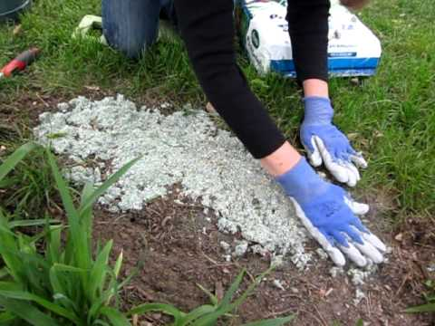 Quick And Easy Lawn Repair Youtube
