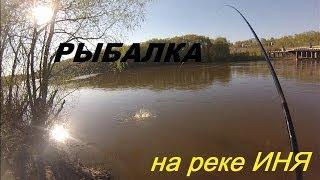 Отличная рыбалка на реке Иня на поплавок весной. 6.05.2014